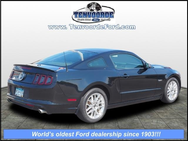 Used 2014 Ford Mustang GT Premium with VIN 1ZVBP8CF4E5205010 for sale in Saint Cloud, Minnesota